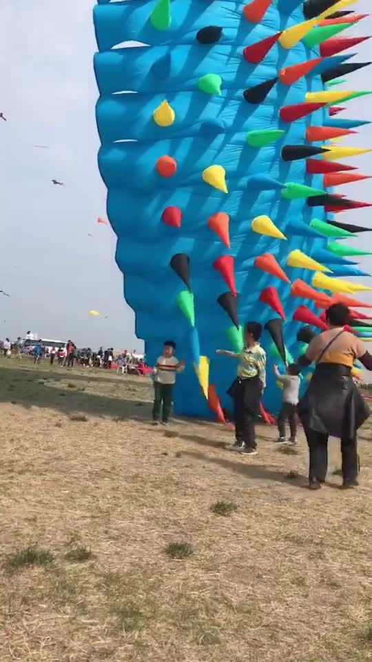 风筝节上的风筝,这风筝能把我放跑