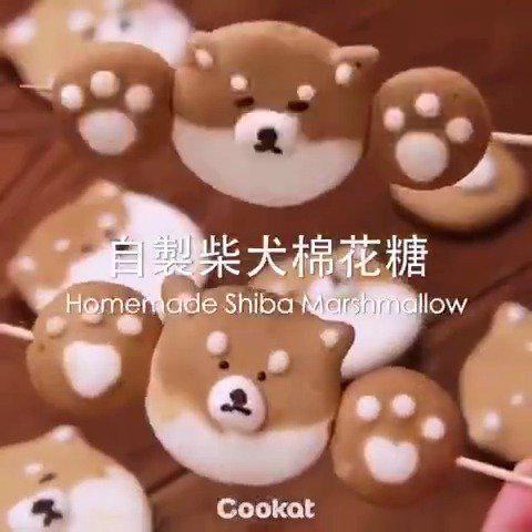 柴犬棉花糖