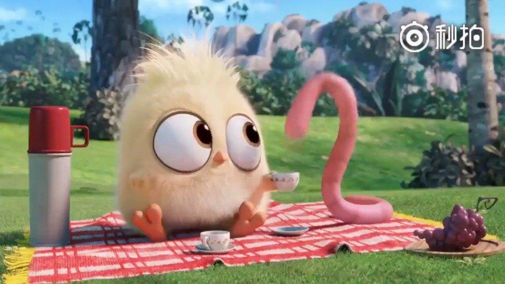 《愤怒的小鸟》动画番外篇合集……