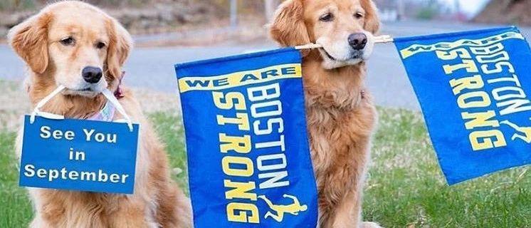 波士顿马拉松首次取消,波士顿城损失2亿美元