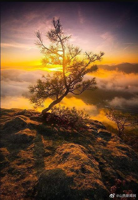 不要沉溺于幻想,不庸人自扰,简单生活,认真努力,接近幸福