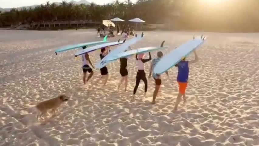 王一博《夏日冲浪店》最新预告~ 是那个阳光,帅气,活泼……