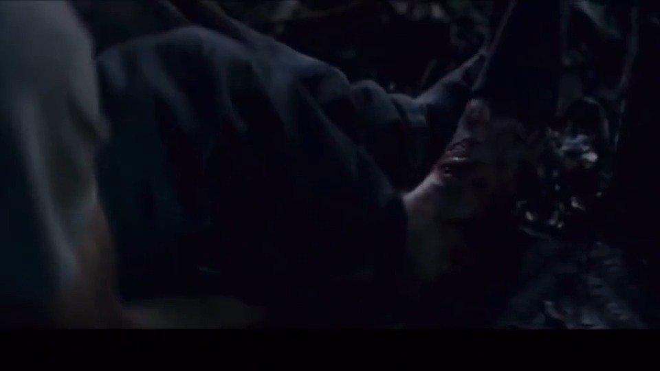 《丛林》逃出亚马逊,一场与天争斗的生存之战