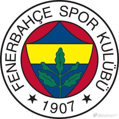 这几年土耳其费内巴切俱乐部外援阵容一览