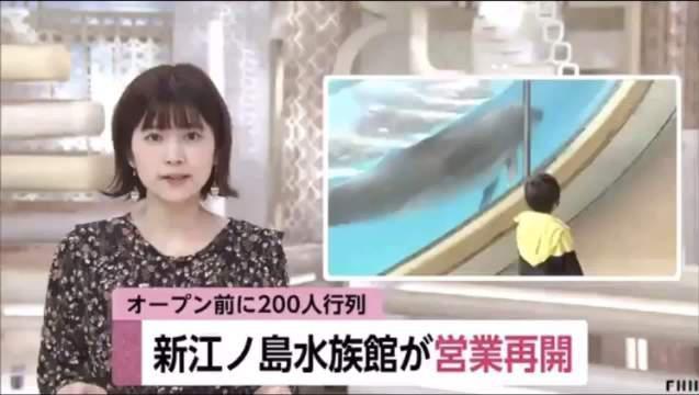 全国紧急事态宣言解除后神奈川县江之岛水族馆于5月30日恢复运营……