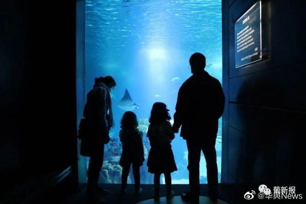 儿童节福利:葡萄牙里斯本海洋馆、动物园、小人国主题公园全月免
