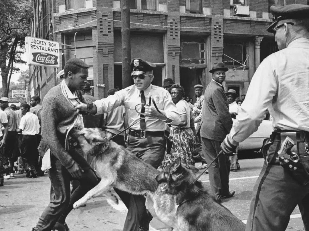 """特朗普扬言放出""""最恶毒的狗"""" 一句话揭开美国种族问题旧伤疤"""