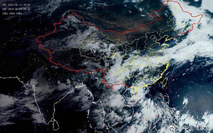 [摩天测速]风摩天测速鹦鹉在广东省阳图片