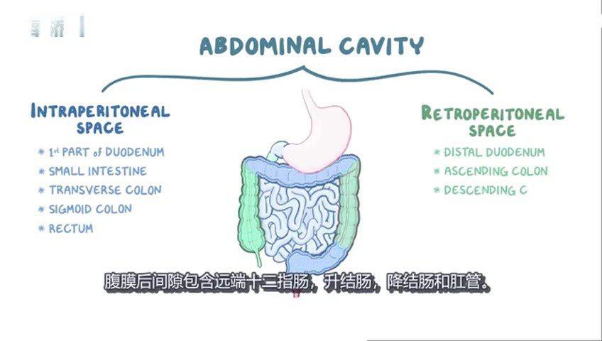 幼年息肉病综合征 幼年性息肉病是一种由局部扩张的腺体和丰富的