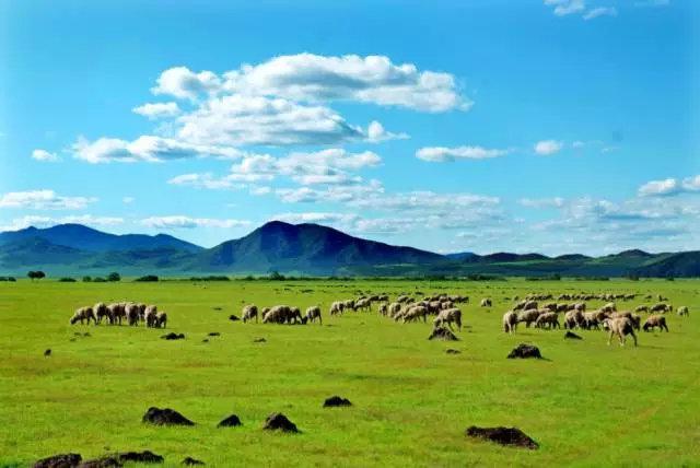 《【星图娱乐线路】爱上内蒙古 | 听!内蒙古人的自然心声——呼麦》