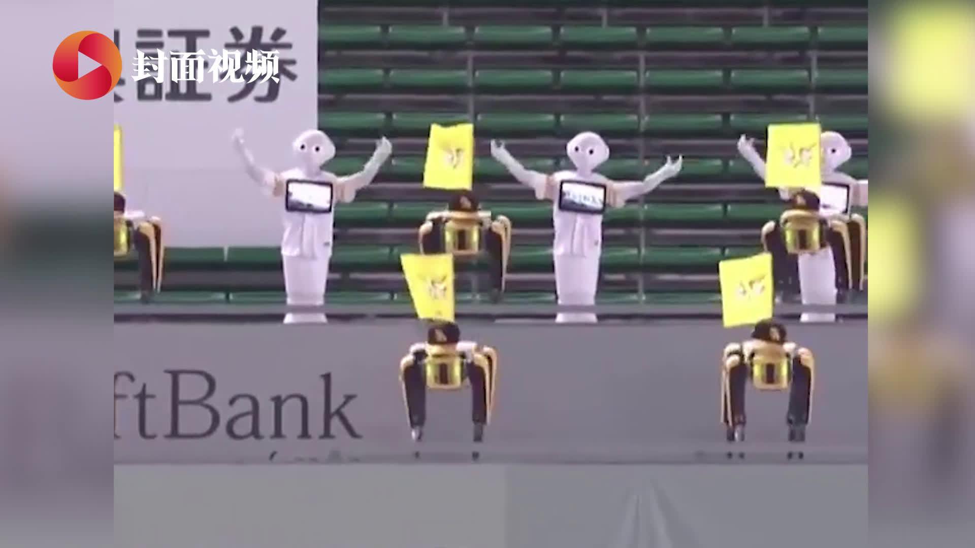 日本棒球队赞助商派出机器人应援团 数只机器狗扭屁股加油助威
