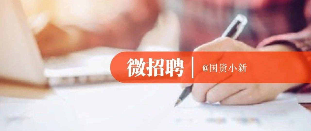 中智公司总部3岗位公开招聘