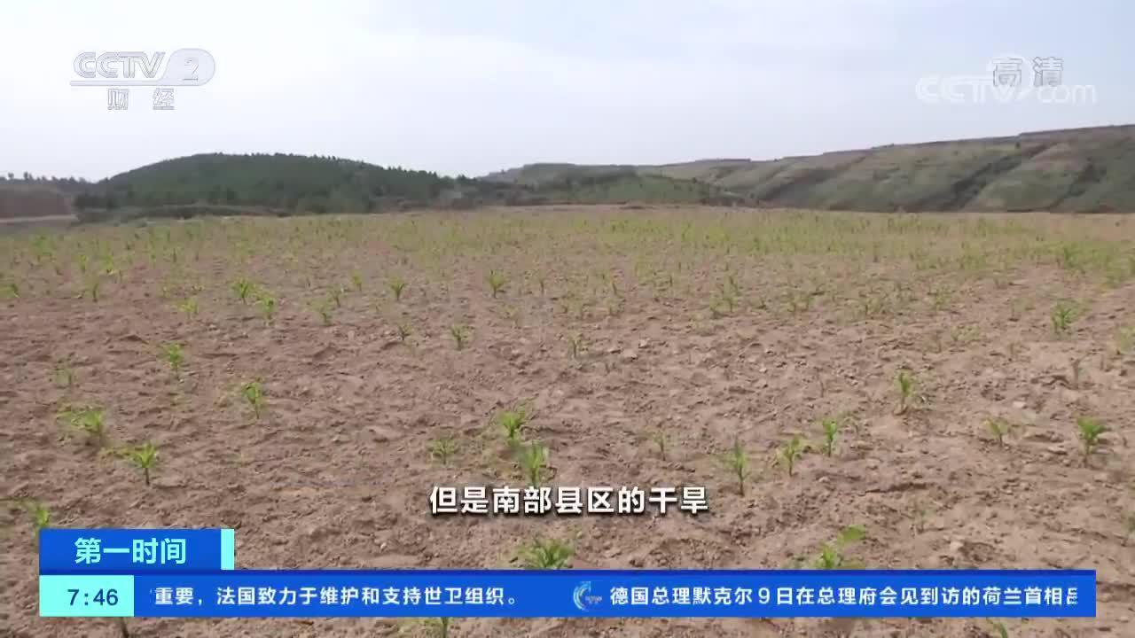 [第一时间]陕西榆林:补水增雨 多举措缓解旱情