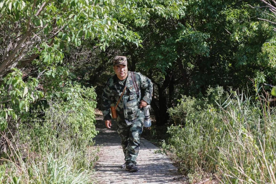 张金林:一名基层护林员12年的坚守