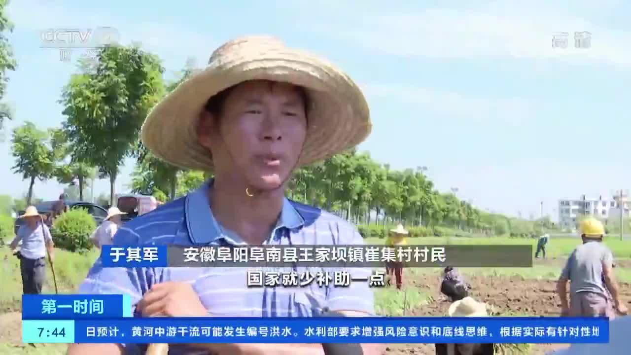 [第一时间]安徽:蒙洼蓄洪区水退人进 积极补种改种