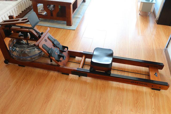 罗永浩种草产品:野小兽划船机,我买来体验了