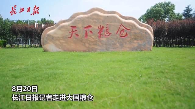 """探访大国粮仓:给粮堆盖""""棉被"""",表层铺设30厘米稻壳隔热保冷"""