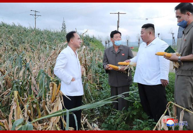 朝鲜最高领导人金正恩考察台风受灾地区灾情
