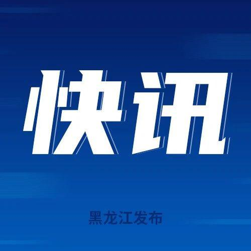 黑龙江省2020年普通高校艺术类高职(专科)批次B段院校网上征集志愿通知
