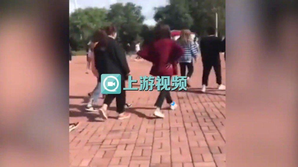 黑龙江30多名女学生街头约架斗殴 教育局副局长校长等12人被处分
