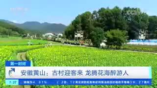 安徽黄山:古村迎客来 龙腾花海醉游人
