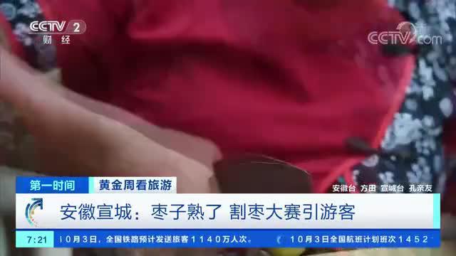 [第一时间]黄金周看旅游 安徽宣城:枣子熟了 割枣大赛引游客