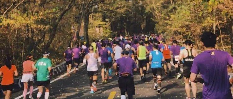 赛讯 | 2020南京马拉松11月29日开跑,今年只设全马!