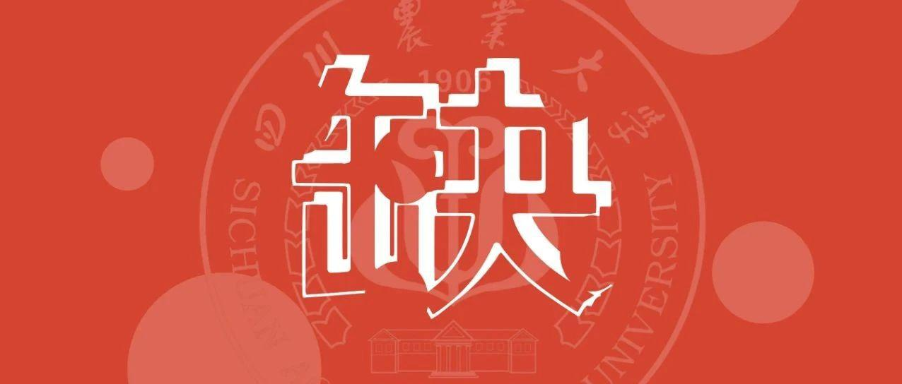 多个名额!四川农业大学公开招聘!