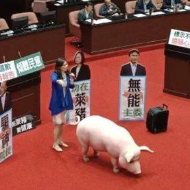国民党主席喊话蔡英文:不该拿孩子健康作筹码
