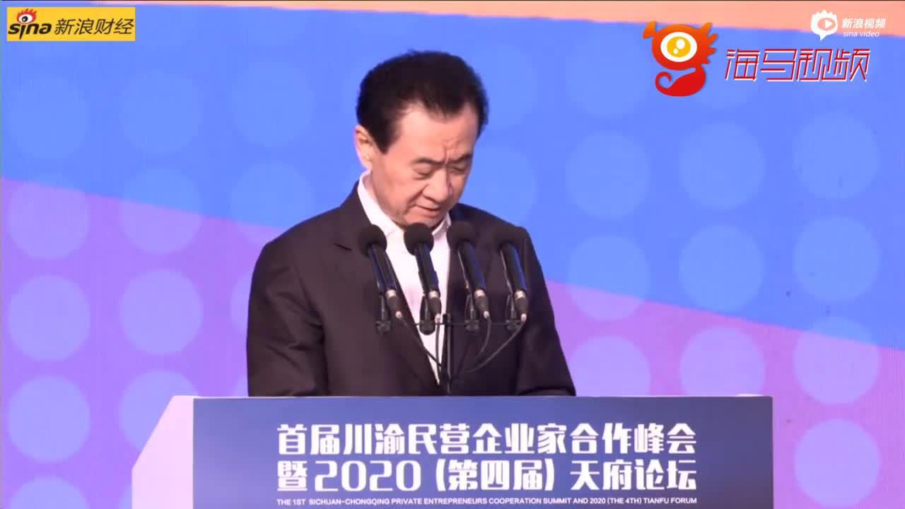 王健林喊话川商:要破除安逸、搓麻勾兑等地域文化中的消极部分