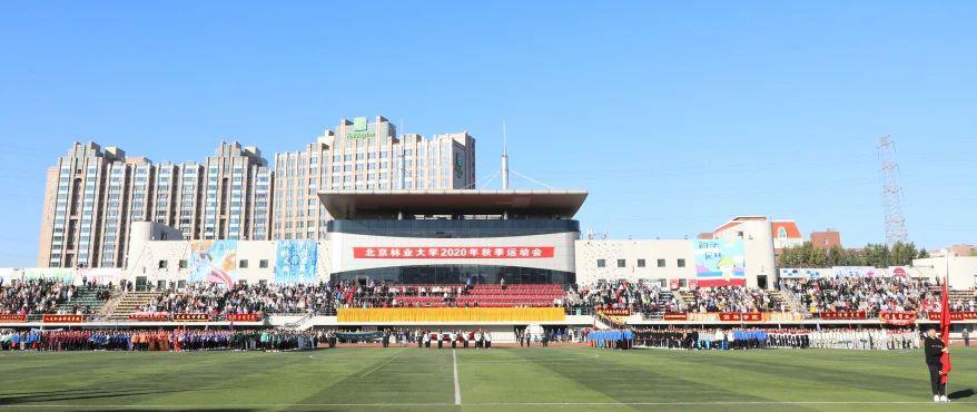 多图!超燃!直击北京林业大学2020年秋季运动会现场