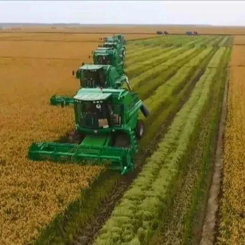 大数据+金融 黑龙江省支农模式获农业农村部表扬