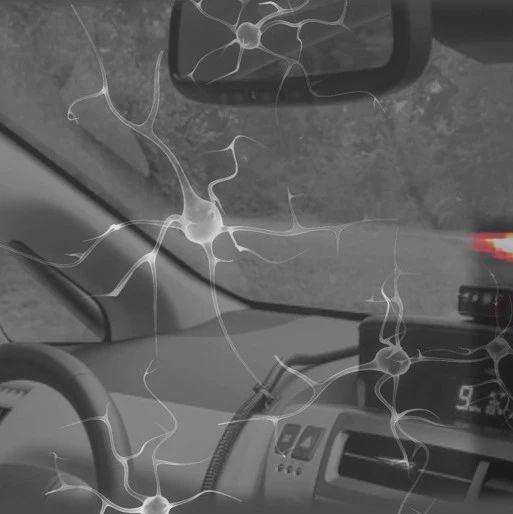 19个神经元控制自动驾驶汽车,MIT等虫脑启发新研究登Nature子刊