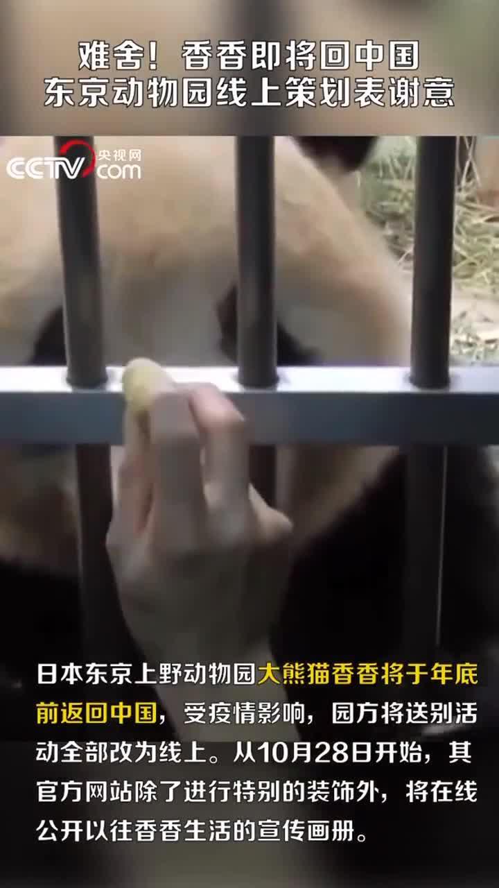 难舍!香香即将回中国 东京动物园线上策划表谢意