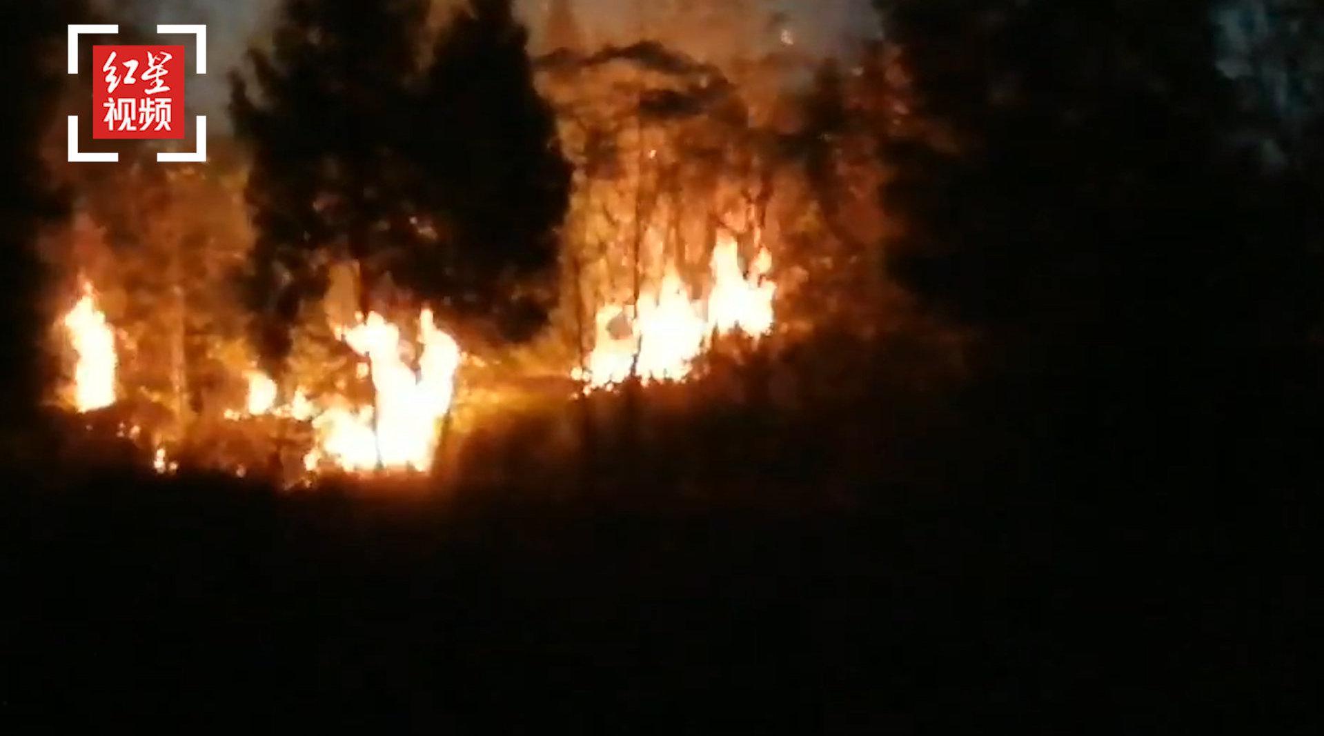 四川营山境内发生一起山火无人员伤亡 火灾原因正进一步调查中