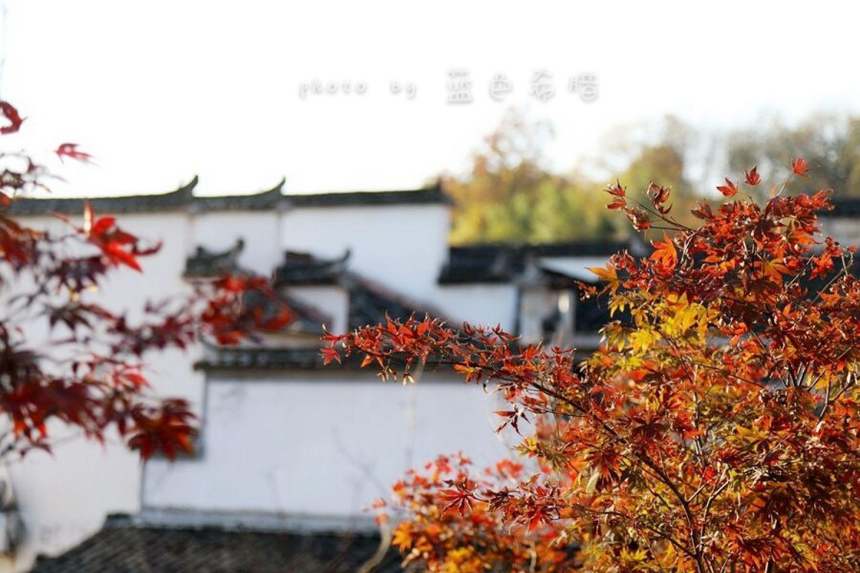 摄影/塔川,轻轻地我来了,带走的是绚丽秋色