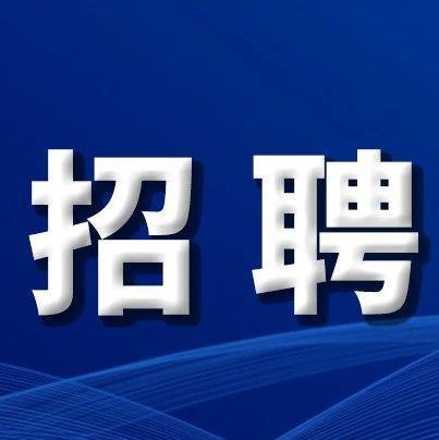 2020长春农安县政务服务中心招聘公益性岗位工作人员44人