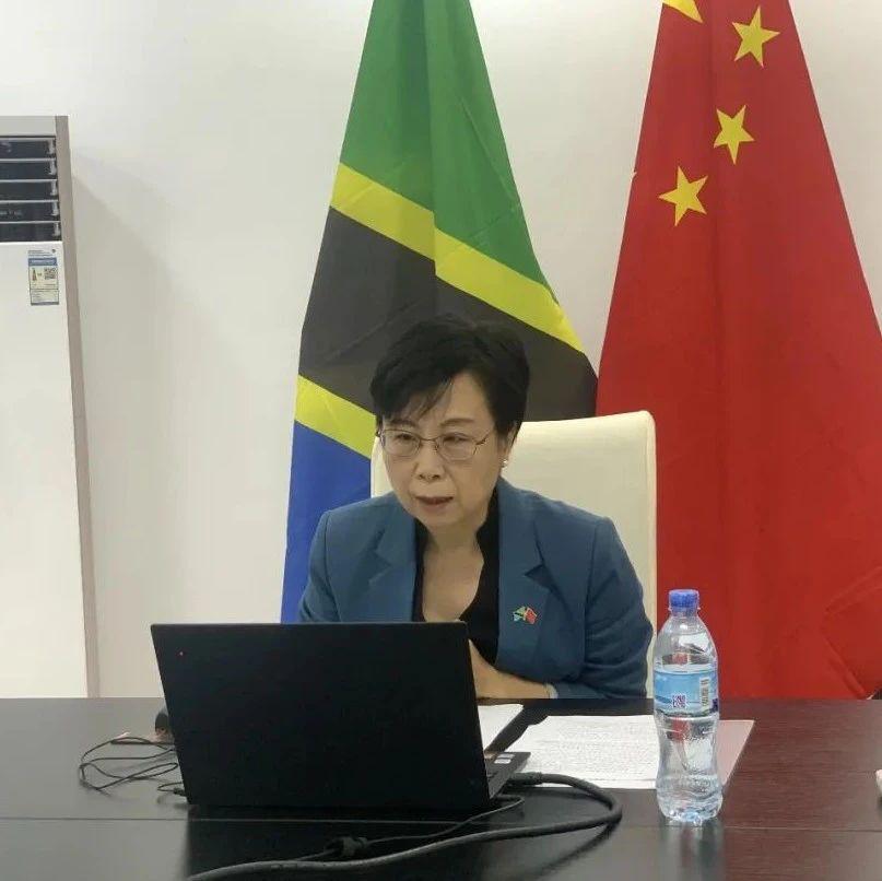 驻坦桑尼亚大使出席河南省-坦桑尼亚线上经贸合作论坛