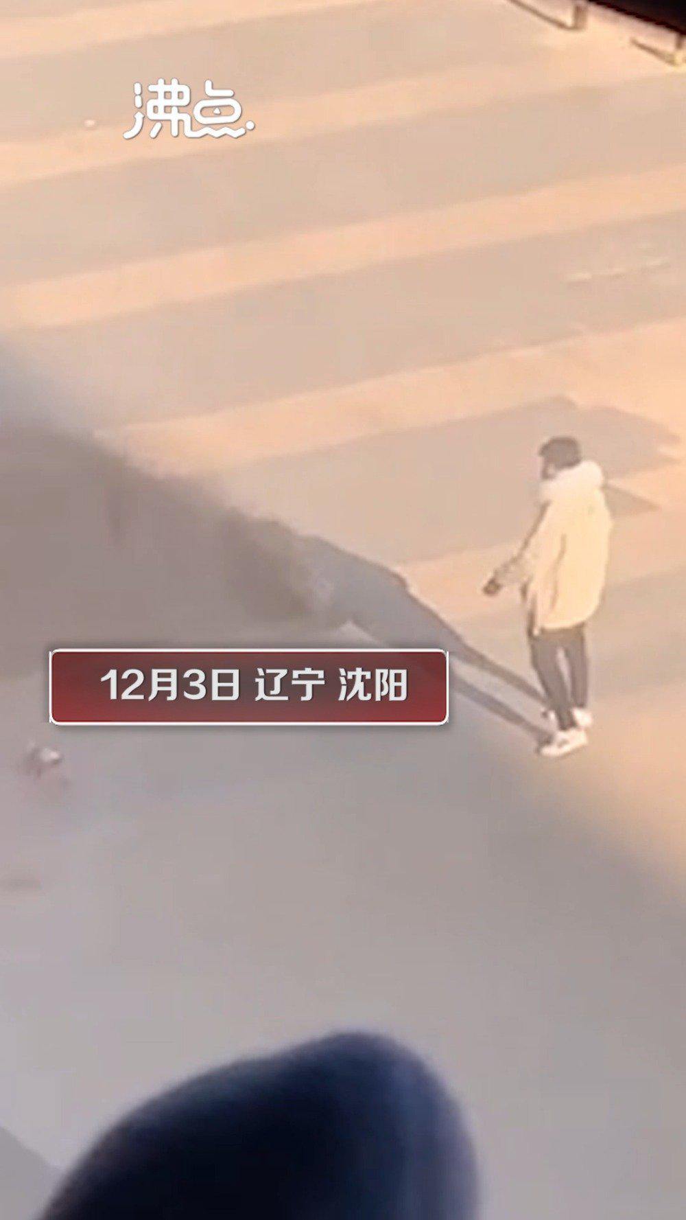 男子当街虐狗连续脚踢拎摔 目击者:气愤至极