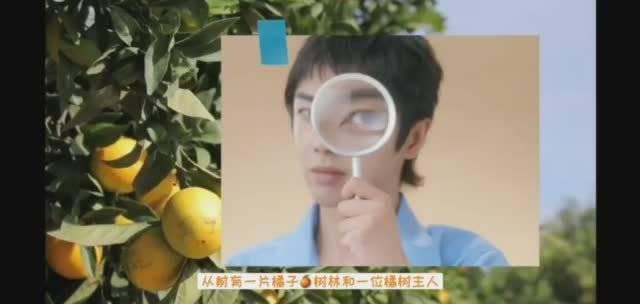 华晨宇与橘子的脑洞故事