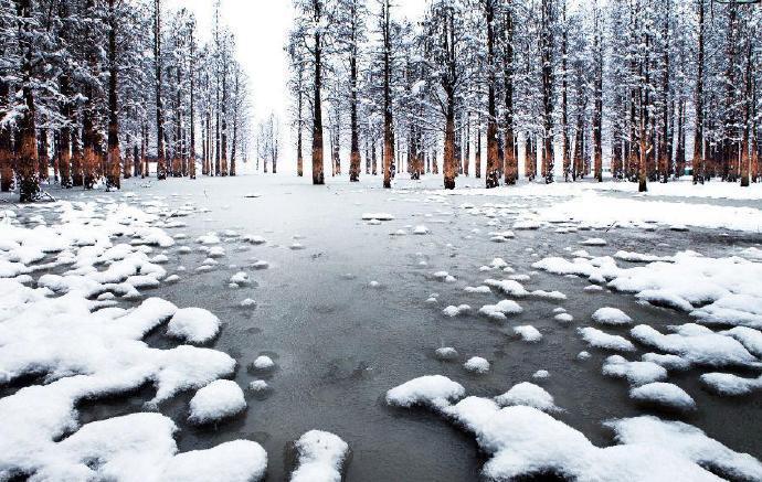 寒冬正盛 杭州临安雪花飘落无比唯美成了人间仙境