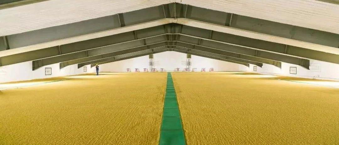经济日报:平衡利用好国际国内粮食市场