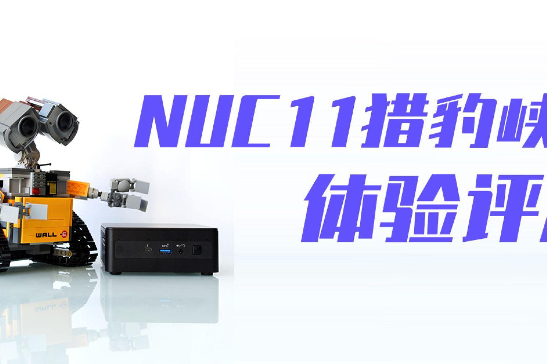 运行大型游戏,流畅8K解码:NUC11猎豹峡谷评测