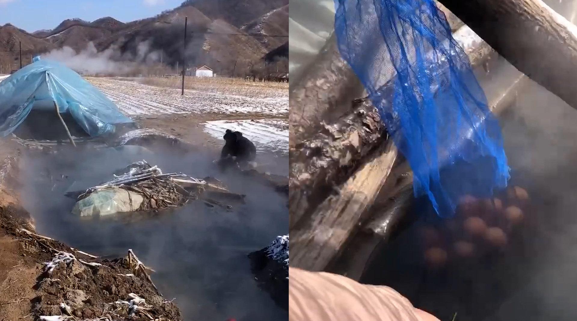 农田里打井冒出75度热水