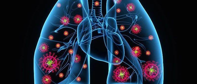"""体检报告上的""""肺小结节""""是啥?需要手术吗?会癌变吗?专家解答→"""