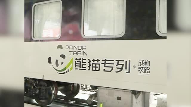 """""""熊猫专列""""上线"""