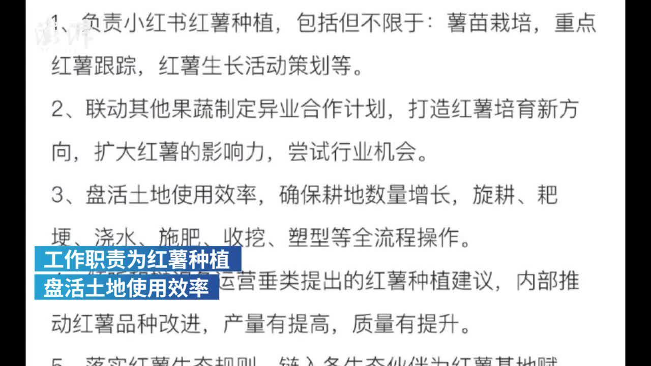 小红书月薪7万招红薯栽培运营官?愚人节的玩笑