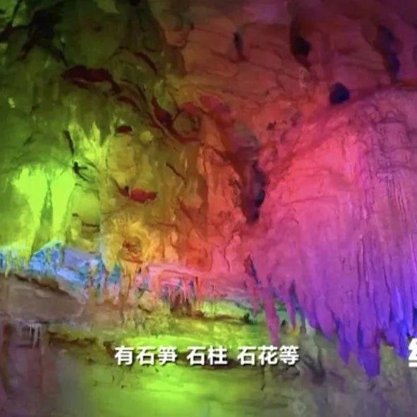 """揭秘50万年美景!探险者发现华中最大天坑,深藏的""""聚宝盆""""→"""