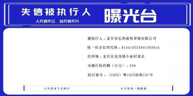 龙川县人民法院失信被执行人名单(2021年第1期)