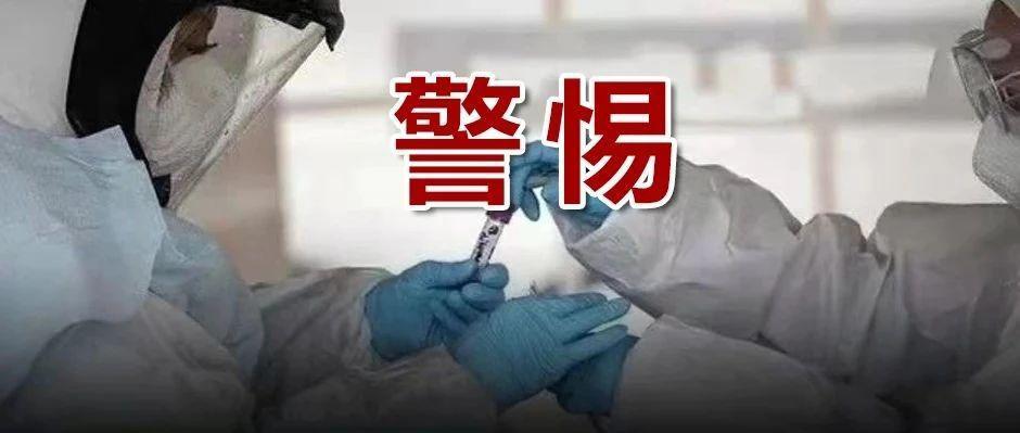 世卫组织:全球新冠感染率已接近疫情暴发以来最高水平…